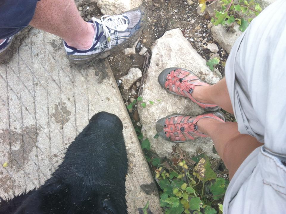 hiking plano