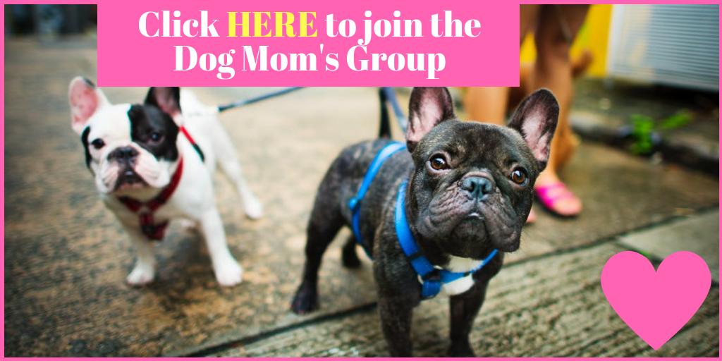 Dog Moms Dallas