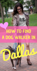 HOW TO FIND A DOG WALKER IN Dallas #DallasTexas #Wag #PlanoTX #DogWalking #Howtobeadogwalker