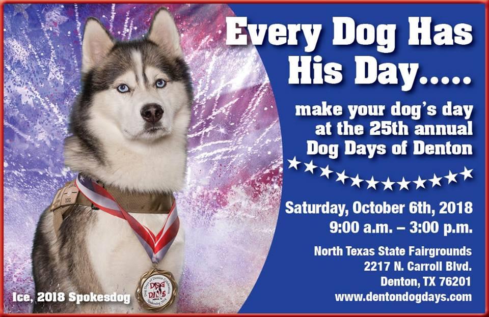 Dog Days of Denton #DentonTX