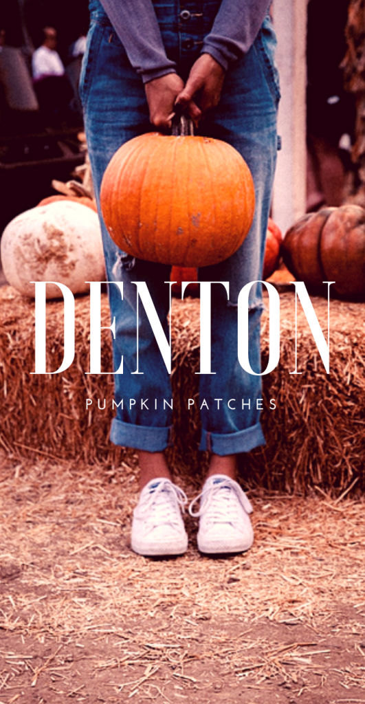 2018 Denton Area Pumpkin Patch