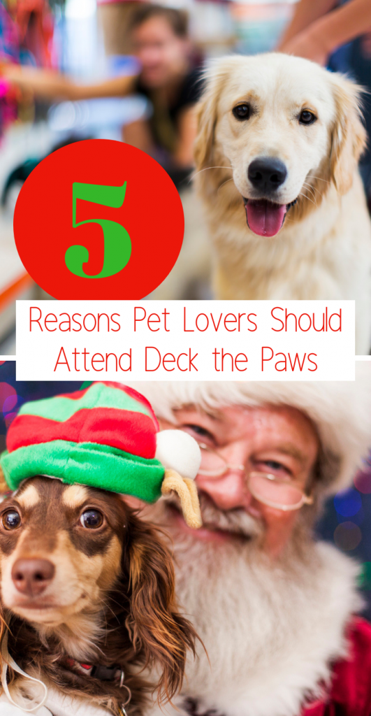 Top 5 Reasons Pet Lovers Should Attend Deck the Paws at Fair Park on December 1-2