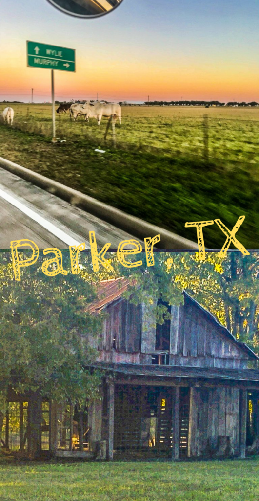 Picnic at Parker Barn in Parker Texas