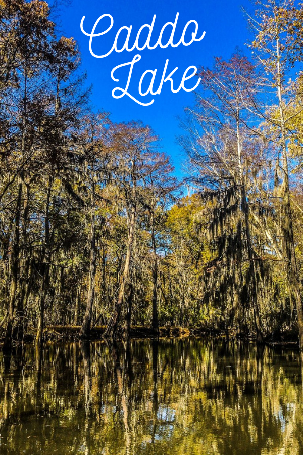 Escape from Dallas: Exploring Caddo Lake