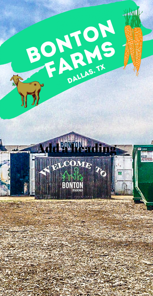 Bonton Farms Dallas