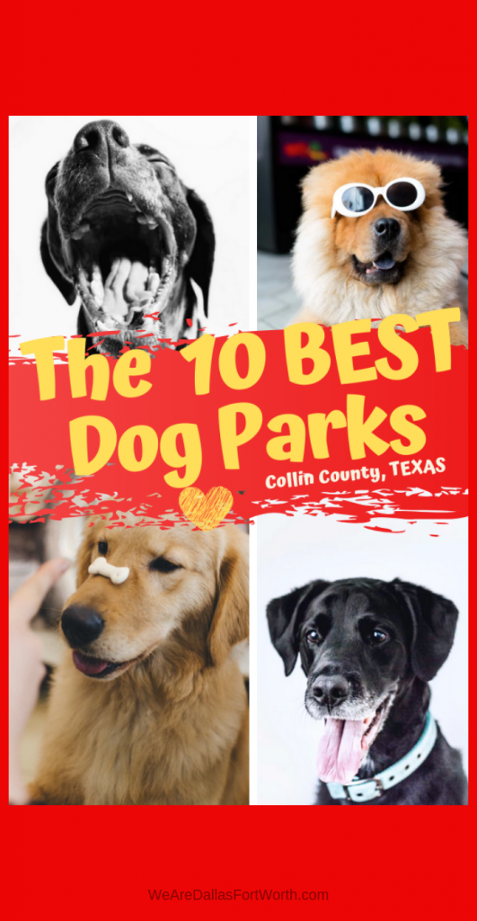 The Best 10 Dog Parks in Collin County Texas