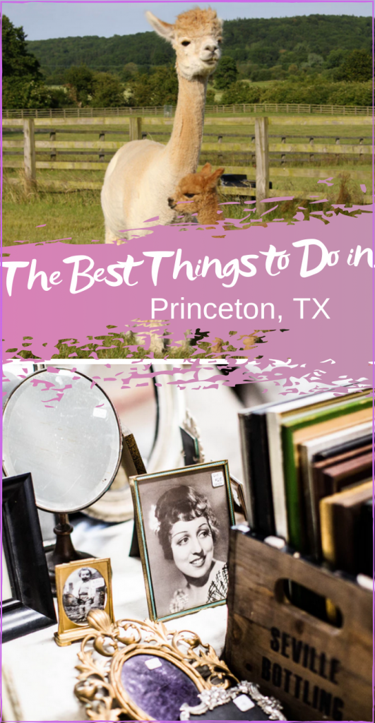 The Best Things to Do in Princeton Texas
