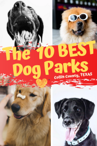 The Best 10 Dog Parks in Collin County, TX