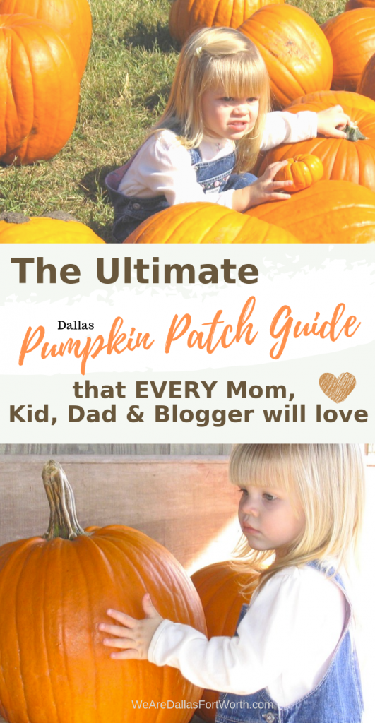 The Ultimate 2019 Dallas Pumpkin Patch Guide (that EVERY Mom, Kid, Dad & Blogger will love)