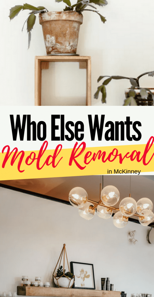 Who else wants mold removal in McKinney