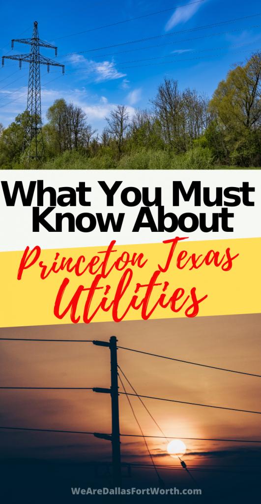 princeton texas electric company