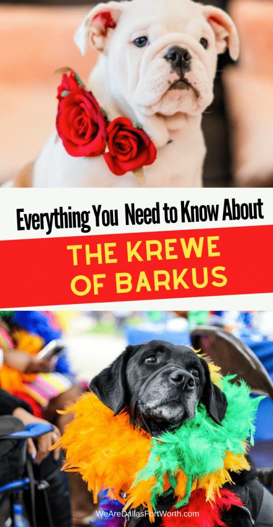 Krewe of Barkus McKinney