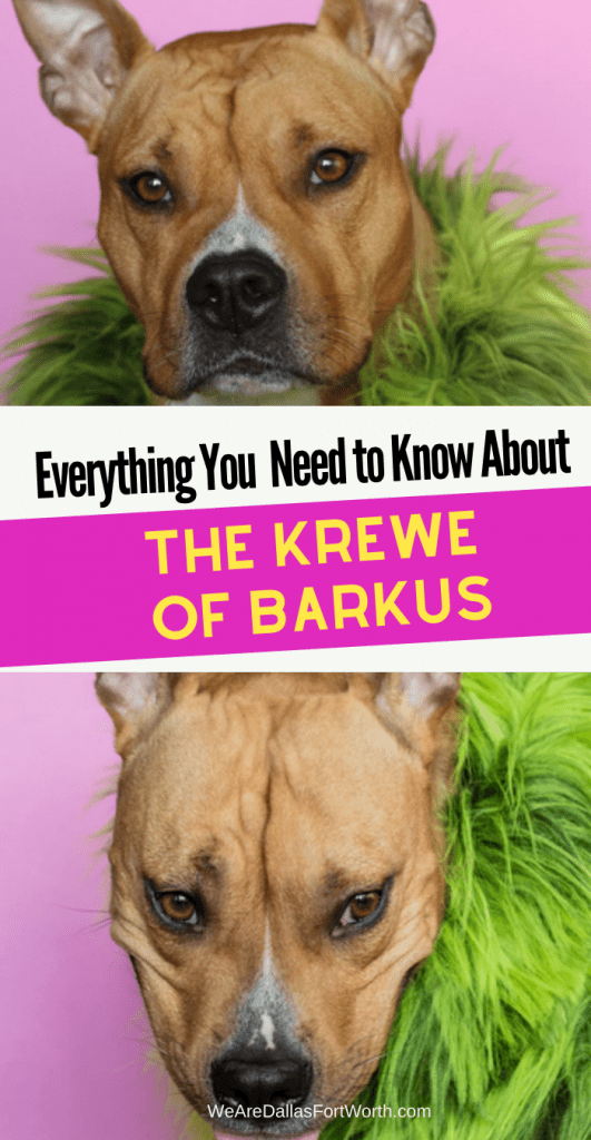 Everything You Need to Know About the Krewe of Barkus McKinney 2020