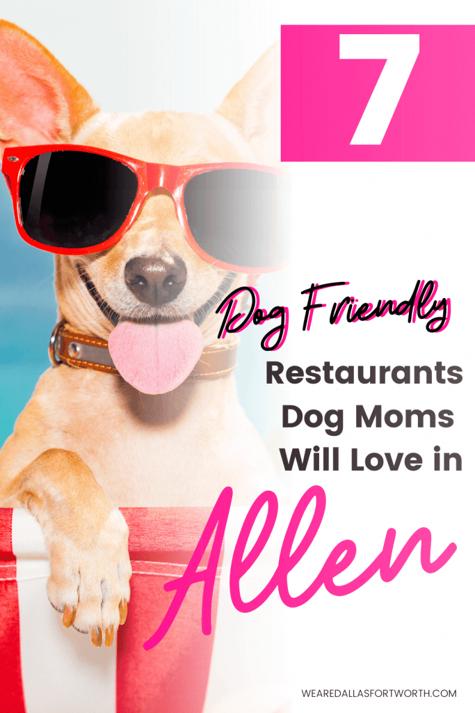 7 Dog Friendly Restaurants in Allen